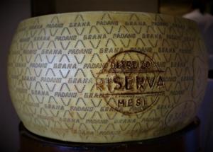 Qualità e tracciabilità dei formaggi