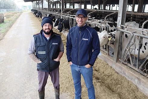 tag a collare, Allflex Livestock Intelligence, SenseHub, bovini da latte, post-parto