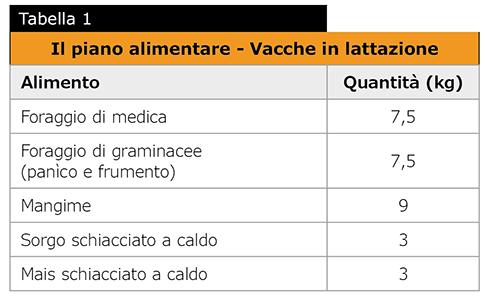 foraggi, genetica, benessere animale, Parmigiano Reggiano, latte
