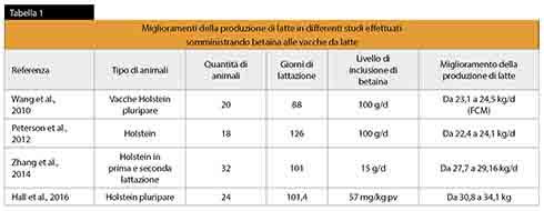 betaina, trimetilglicina, Orffa, stress da caldo, fermentazioni ruminali, Beta-Key